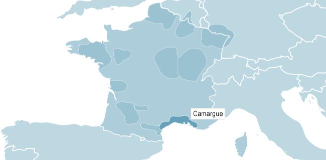Kort over Camargue